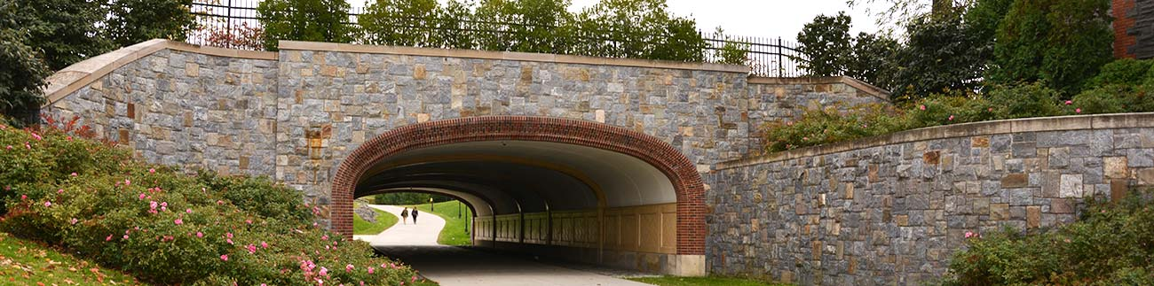 Stone Bridge Construction